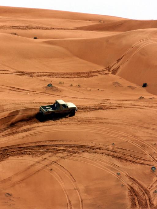 Oman Wüste (Knüppe)
