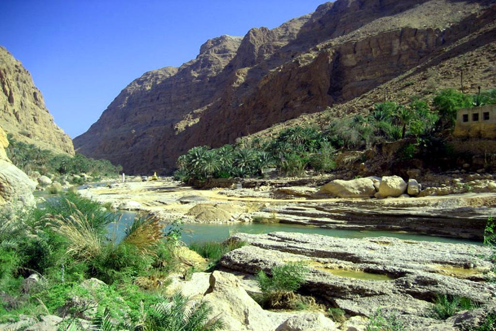 Wadi Tiwi 1