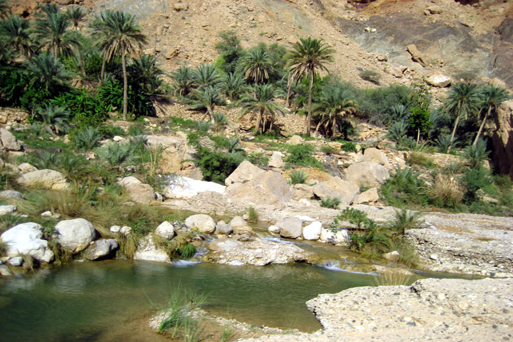Wadi Tiwi 3
