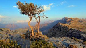 Djabal Akhdar Blick in die omanische Berglandschaft