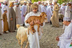 Oman: Auf dem Tiermarkt in Nizwa (copyright Bea Müller)