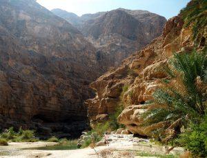 Reisetyp Wandern? Wadi Shab im Oman