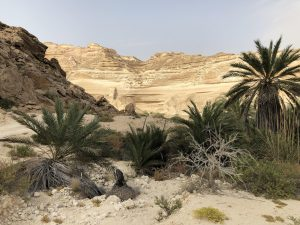 Erlebnisreise in Oman: Wadi Shuwaymiyah