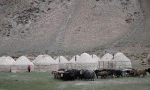 Yurten-Camp auf dem Plateau