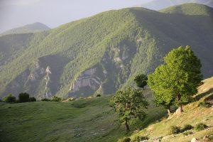 0413 Iranreise 2019 Schamberger Frühlig im Iran im Gebirge